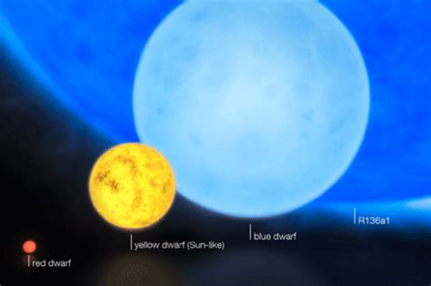 Massive Blue Supergiant Challenges Theory of How Big a