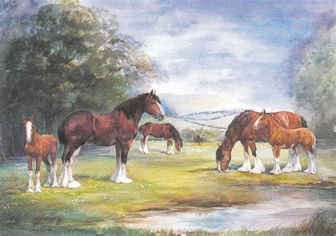 Art Cards - Horse Collectables For Sale